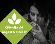 CBD olja ångest och stress