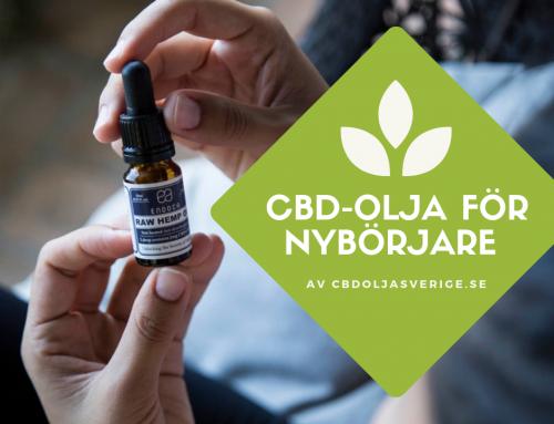 Den Stora CBD-Guiden (Cannabisolja) [2020]